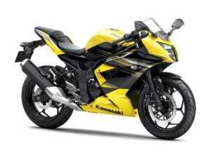Kawasaki Ninja 250SL/RR Mono Yellow